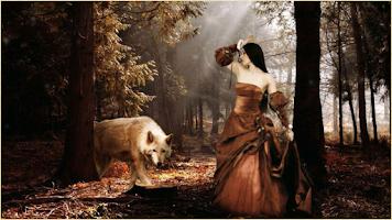 Screenshot of Fantasy Wallpapers