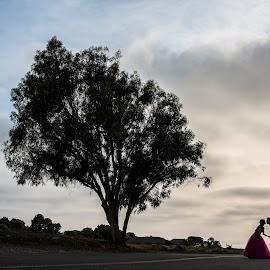 Can You Feel The Love by Yansen Setiawan - Wedding Other ( creative, silhouette, art, losangeles, illusion, love, kiss, yansensetiawanphotography, fineart, prewedding, d800, wedding, lifestyle, la, photographer, yansensetiawan, nikon, yansen, engagement )