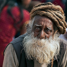 Portrait of a wise man by Marco Parenti - People Portraits of Men ( india, people, man, portrait )