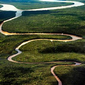Borneo River by Anna Tatti - Landscapes Travel (  )