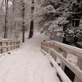 snowy bridge by Joann Jarrett Brasington - Landscapes Weather ( wooden, snow, path, snowy, bridge )