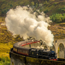 Hogwarts Express by Katerina Folprechtova - Transportation Trains ( glenfinnan viaduct, train, harry potter, jacobite, steam )