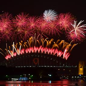 First Display by Kamila Romanowska - Abstract Fire & Fireworks ( lights, new year, 2015, harbour, australia, nye, fireworks, celebration, bride, sydney )