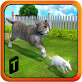 Game Crazy Cat vs. Mouse 3D APK for Windows Phone