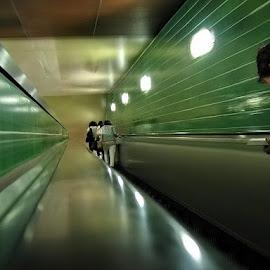 by Eduardo Magalhães - Transportation Trains