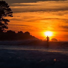 Straw's Point Sunrise by Justin Brady - Sports & Fitness Surfing ( ocean, straw's point, beach, new hampshire, surfing, new england, fall, summer, nh, sunrise, jenness beach, nh seacoast, rye, september )