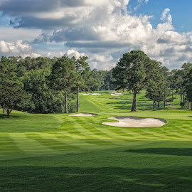 Peachtree Afternoon by Dave Sansom - Sports & Fitness Golf ( 'professional golf course photography', 'bobby jones', 'private golf club', 'peachtree golf club', 'golf course', 'professional golf course photographer', golf, atlanta, 'dave sansom',  )