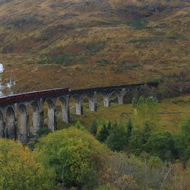 The Jacobite by Chuck Zacharias - Landscapes Travel ( scotland, autumn, steam train, bridges, landscapes,  )