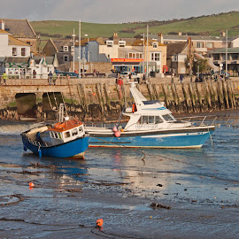 Boats in the Harbour at West Bay. by Simon Page - Transportation Boats