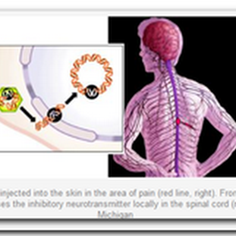 Gene therapy for chronic pain gets first test in people