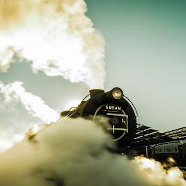 by Farrah-Diba Sing - Transportation Trains ( johannesburg, steam train, train, trains,  )