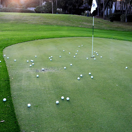 Balls on the Green by Kathy Rose Willis - Sports & Fitness Golf ( golf course, flag, golf balls, green, white, golf, golf green,  )