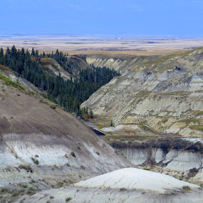 Drumheller  by Patti Hobbs - Landscapes Mountains & Hills ( landscapes mountains hills bad lands )