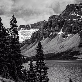 Glacier Park, Alberta, Canada by Sandy Friedkin - Landscapes Mountains & Hills ( glacier, mountains, trees, rocks, river )