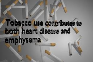Screenshot of Stop Smoking Talking Cigarette