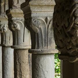 Coligiata de Santa Juliana1 by Ian Thompson - Buildings & Architecture Architectural Detail ( church, carving, stone, cantabria, ivy, courtyard, public building, spain, pillars )