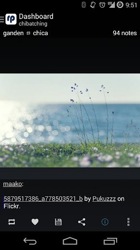Reprintr - Tumblr photo viewer - screenshot