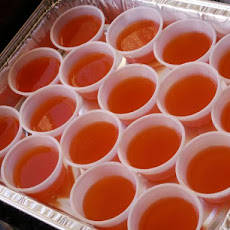 ... jello margarita jello yum orange creamsicle jello shots click through