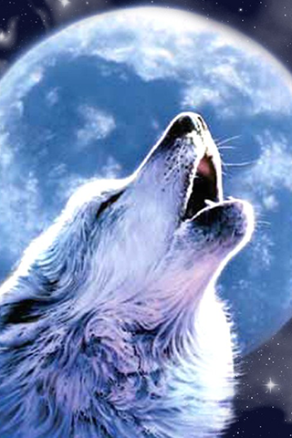 wolf moon wallpapers on google play reviews stats