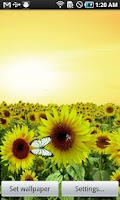 Screenshot of Sunflower LW Free + weather