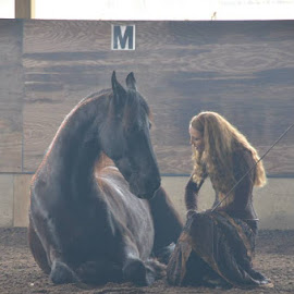Douwe and Sandra by Annette Masselli - Animals Horses