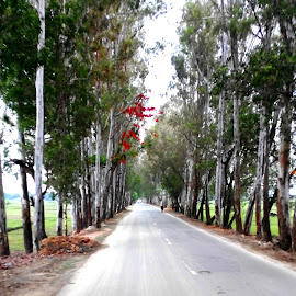 Infinite Point by Somananda Ningom - Instagram & Mobile Android ( green fields, red flowers, trees, road )