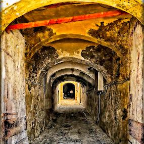 Mdina-Malta by Lino Chetcuti - City,  Street & Park  Neighborhoods