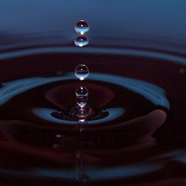 Quadruple Drop by Terry Moffatt - Abstract Water Drops & Splashes ( abstract, splash, droplet, water drop )