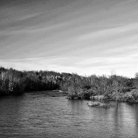 River Way by Ray Gradel - Novices Only Landscapes ( water, nature, black and white, landscape, river )