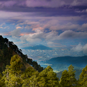 Mexico City view by Cristobal Garciaferro Rubio - Landscapes Travel ( mountains, mexico, trees, city )