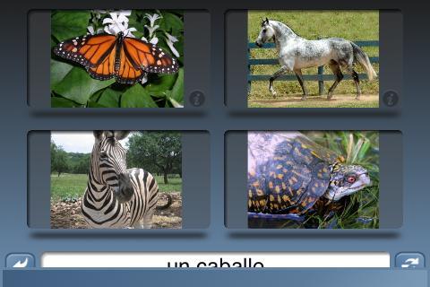 【免費教育App】NounStar Language Spanish-APP點子