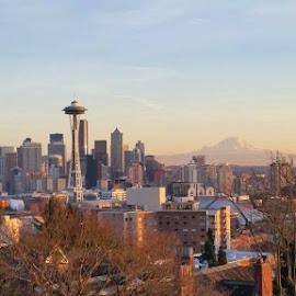 Kerry Park Seattle, WA by Melissa Hales Schroeder - City,  Street & Park  City Parks