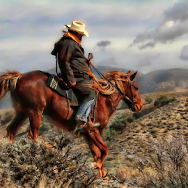 Cold Ride by Dennis Ducilla - Animals Horses ( sagebrush, clouds, rider, red, nevada, art filter, horse, white hats )