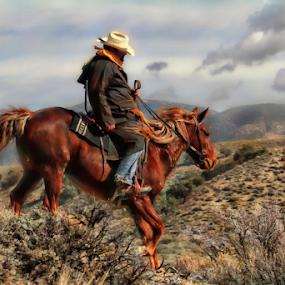 Cold Ride by Dennis Ducilla - Animals Horses ( sagebrush, clouds, rider, red, nevada, art filter, horse, white hats )