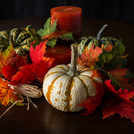 Autumn Delight by Jeff Burton - Nature Up Close Gardens & Produce ( seasonal, wood, still life, jeff, yellow, vibrant, leaf, colored leaves, winter squash, leaves, crop, gourd, colour, candle, nature, autumn, foliage, garnish, light, orange, pumpkin, colors, agriculture, table, arrangement, season, faa, vegetable, natural, floral, golden, plant, festive, concept, oak leaves, colorful, burton, life, style, squash, gold, multiple, closeup, decorate, thankful, decoration, green, elegance, beautiful, pumpkins, still, traditional, arranging, ornamental, red, color, elegant, fall, healthy, brown, stem, october, harvest, garden, design, produce,  )