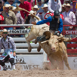 Don't Let Go by Ty Stockton - Sports & Fitness Rodeo/Bull Riding ( bull rider, rodeo, cheyenne frontier days, roughstock, bull riding )