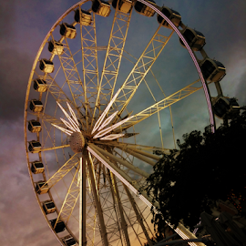 The Wheel by Waldi Wenhold - Instagram & Mobile Android ( south africa, waterfront, cape town, ferris wheel )