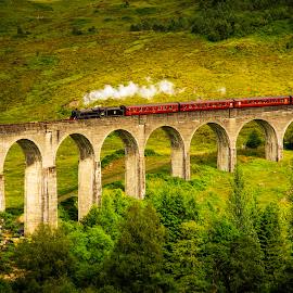 The Jacobite 2, Glenfinnan Bridge by Don Alexander Lumsden - Transportation Trains
