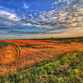 Hay by Casey Mitchell - Landscapes Prairies, Meadows & Fields (  )