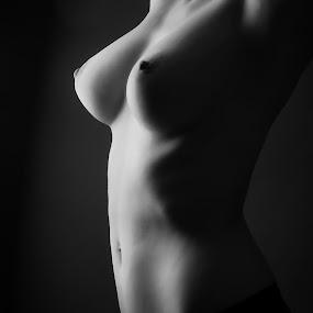 Body Curves by Tom Fensterseifer - Nudes & Boudoir Artistic Nude (  )
