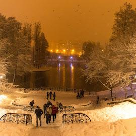 Winter by Anton Rafael - City,  Street & Park  City Parks ( winter, nature, park, snow, snowy, snowflake, frozen )