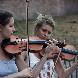 The Violinists... by Avishek Patra - Artistic Objects Musical Instruments ( musicians, violin, street musician, rome, female violinist, musician, italy, violinist )