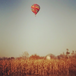 November is lovely. by Shannon Leigh - Landscapes Prairies, Meadows & Fields ( november, fade, illinois, afternoon, colors, beautiful, hotairballoon, prairie, float, country, field, sky, lovely )