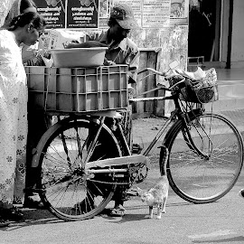 WAITING FOR A TASTE by Doug Hilson - City,  Street & Park  Street Scenes ( cats, fish peddler, cute )