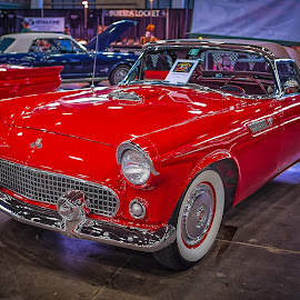 Thunderbird by Ron Meyers - Transportation Automobiles
