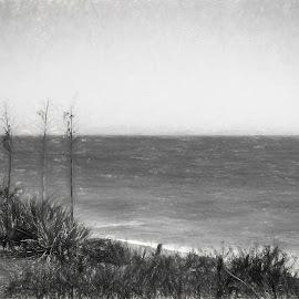 Carrillo Beach by Zsuzsanna Szugyi - Digital Art Places ( scene, bech, graffic )