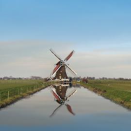 Typical Dutch by Ad Spruijt - Landscapes Prairies, Meadows & Fields