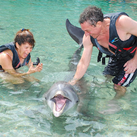 Proposal over a dolphin by Sheryl Biesman - Wedding Other ( surprise, dolphin  ring, engagement )