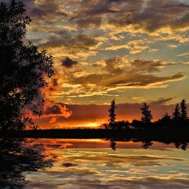 aug sunset by Leslie Collins - Landscapes Sunsets & Sunrises ( clouds, sunset, trees, landscape,  )