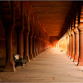 Sunrise in the Forecourt by Maricha Knight van Heerden - Buildings & Architecture Public & Historical ( forecours, leading lines, bench, light and dark, diagonal lines, taj mahal, dog )